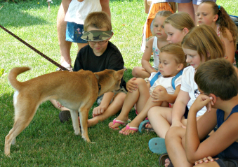 [dingo with children]