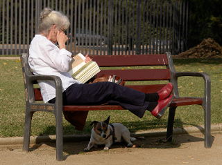 [woman reading, on a park bench]